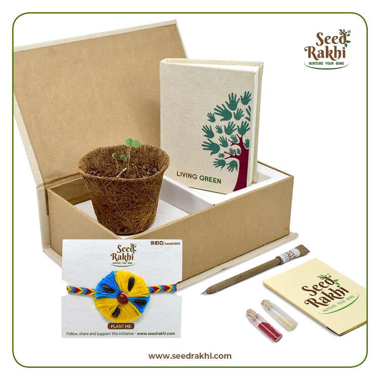 Seed Rakhi 1.1