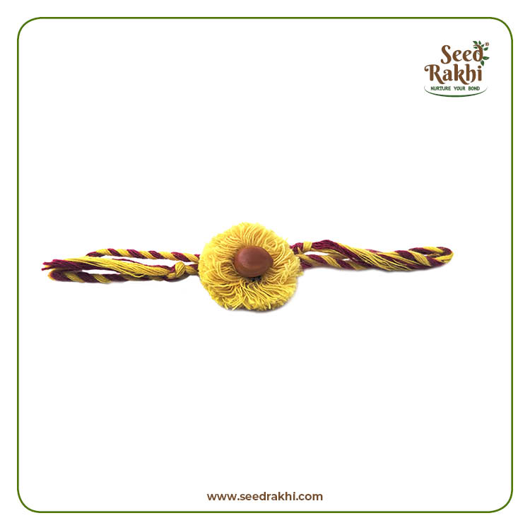 Seed Rakhi 2